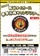 2019年 阪神タイガース春季沖縄キャンプツアー(イメージ)