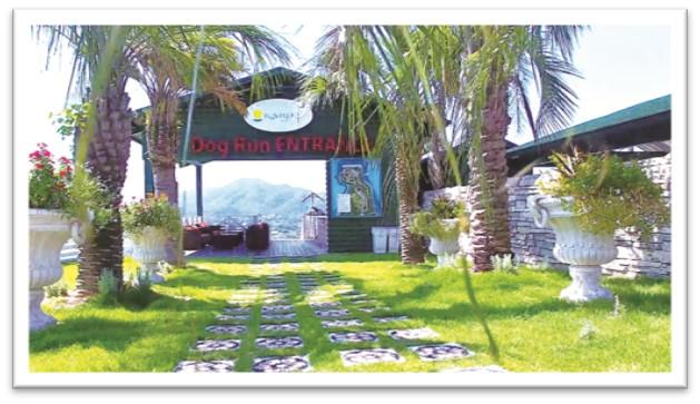 リゾート ドッグラン カリコ