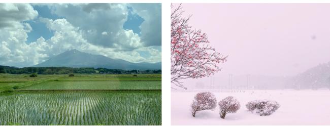 自然豊かな岩手県八幡平市。冬季は雪に覆われ、診療所へ赴くはずの医師が移動を断念する日も。