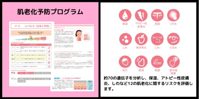 肌老化予防プログラム