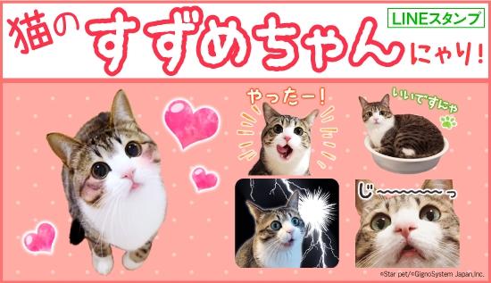 モフモフかわいい猫の『すずめちゃん』にゃり!初のLINEスタンプ配信開始!|ジグノシステムジャパン株式会社のプレスリリース