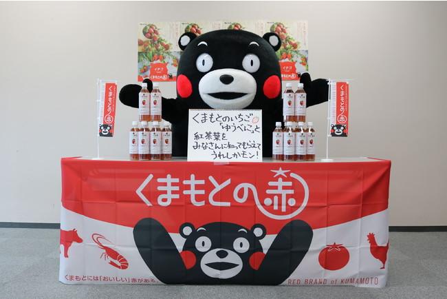 (C)2010熊本県くまモン