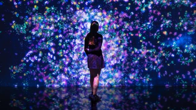 大分市美術館にて、大分初の大規模展覧会「チームラボアイランド 踊る!美術館と、学ぶ!未来の遊園地」を、開催。2016/7/15~9/25