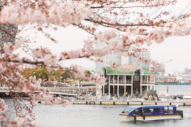 インター コンチネンタル 横浜 pier 8
