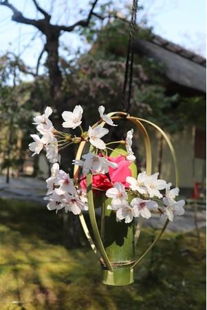 竹装飾を彩る椿と桜※画像は過去開催時のもの