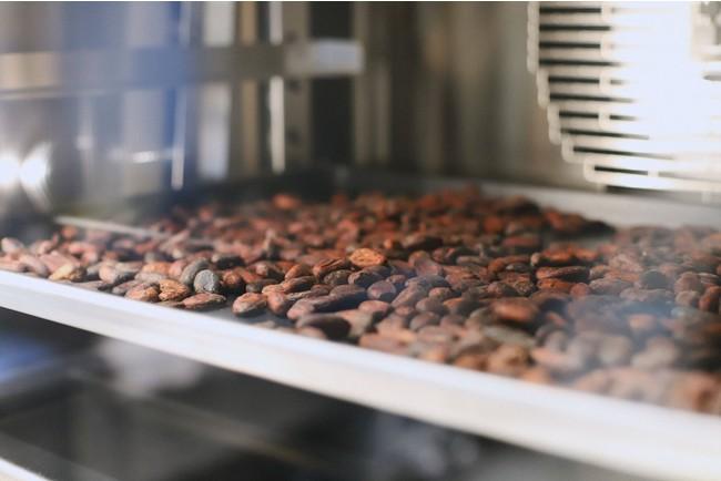 カカオ豆を焙煎している様子