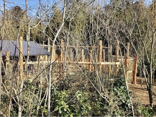 建設中の「ケープの森」