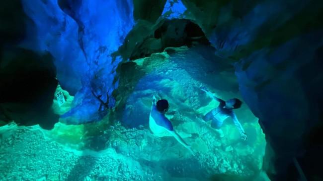 『稲積水中鍾乳洞サウナ』白山川は名水百選に選ばれホタルのふるさととも呼ばれるほど透明度の高い清流。洞内の温度は年中16度に保たれています。