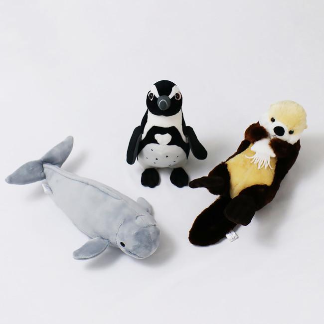 ※写真は左からスナメリ、ペンギン、ラッコ