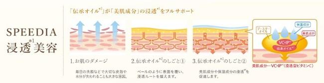 [オーストリッチオイル]が浸透※1しやすい環境をつくり、[VC-IP]※3が肌に角質層まで浸透した後、大人肌の様々なエイジングサインや悩み※4に対応します。