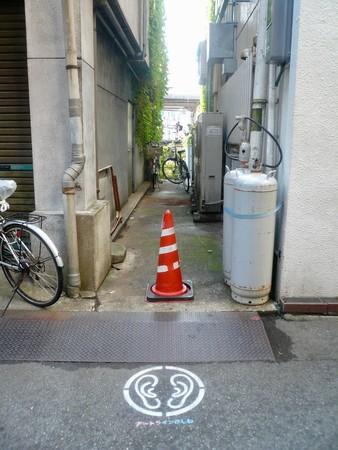 (C)️Akio Suzuki