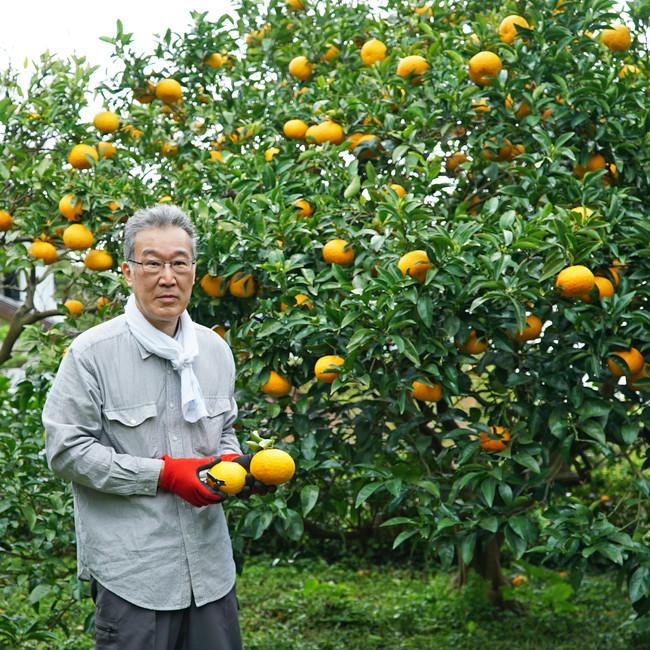 甘夏農家の太田さん