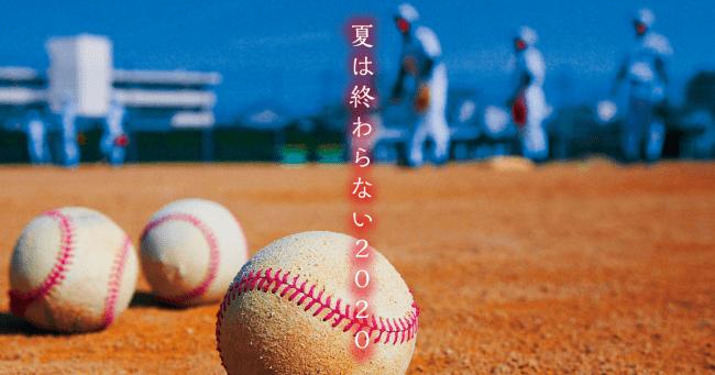 高校 熊本 野球 県