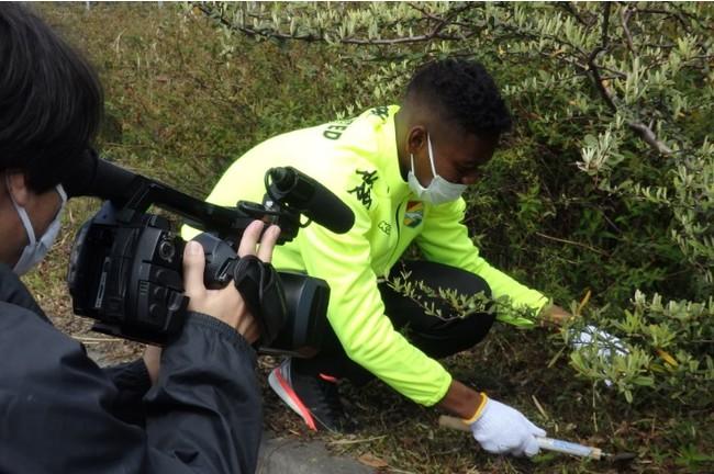 ブワニカ選手は、今度は刈った草の掃除を始めました。積極的ですね(笑)