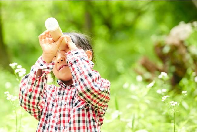 遊びと学びの夏休み、五感が喜ぶ夏の体験をしよう