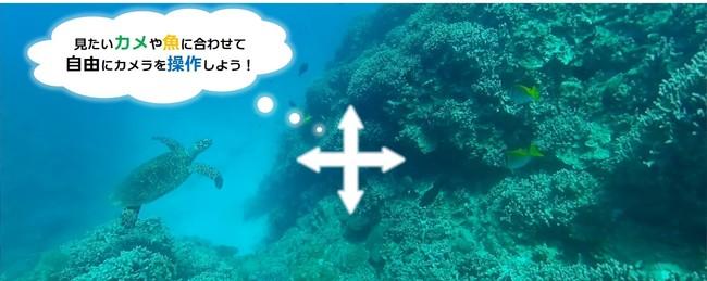 ※水中映像は声により任意の方向を体験可能