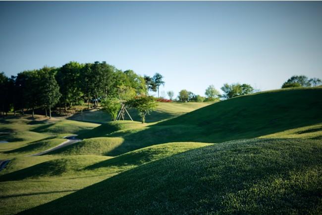 コースメンテナンスに重点を置き一面緑の絨毯のような芝密度に仕上げる