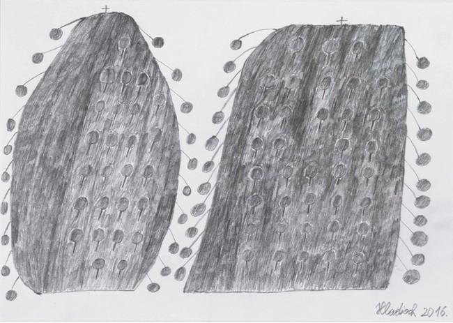 ヘルムート・フラディッシュ 《ストロベリーツリー》 2016年 鉛筆、紙 21×29.7cm Courtesy galerie gugging