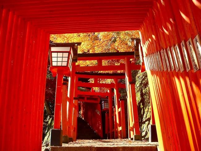 朱塗りの鳥居がまるでトンネルのように続く参道がある「太皷谷稲成神社」