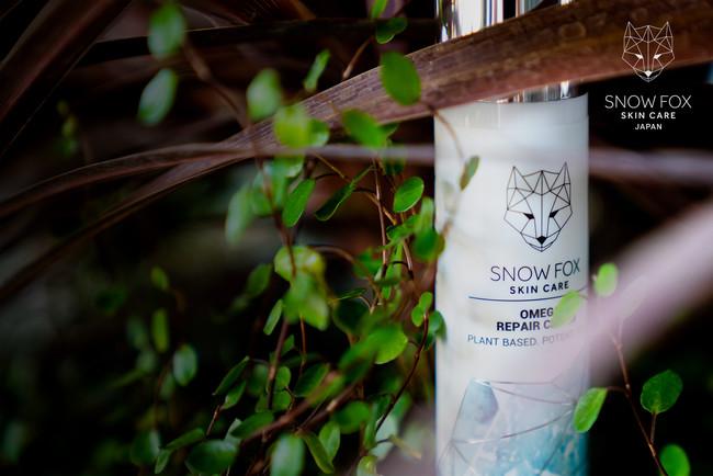 株式会社Snow Fox Japan