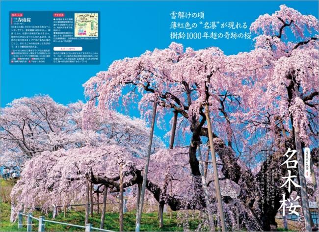 「名木桜」ページ例