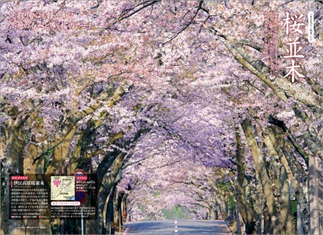 「桜並木」ページ例