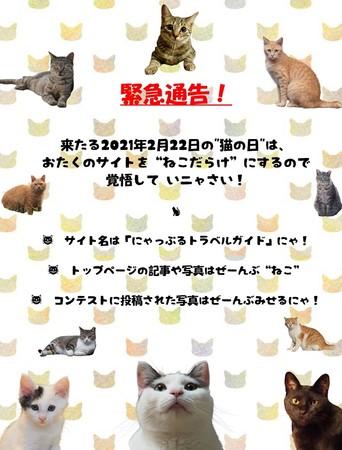 <猫からの犯行予告!>
