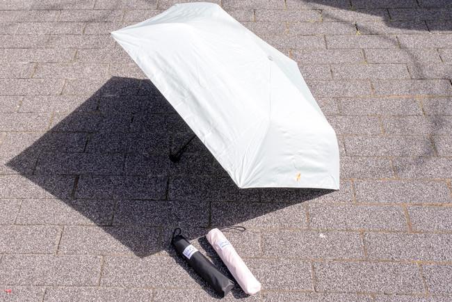 <「ことりっぷコラボ折傘」商品画像>