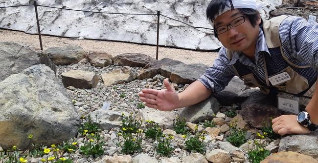 種子を採取した植物園園長の坪井園長。
