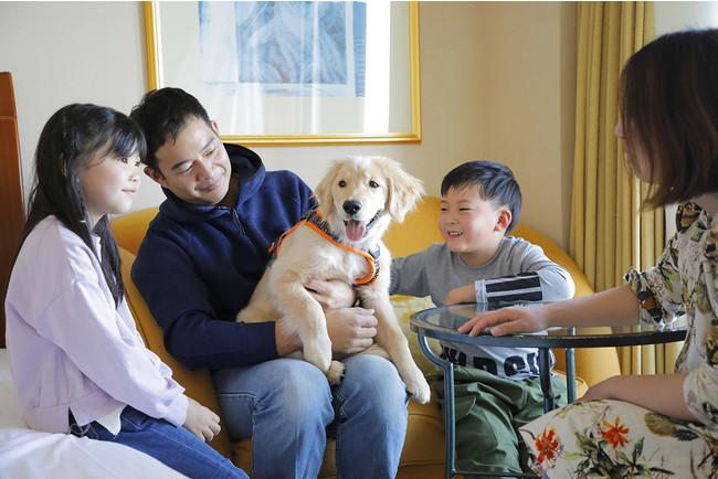 愛犬と泊まれるオーシャンビュールーム