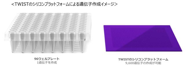 TWISTのシリコンプラットフォームによる遺伝子作成イメージ