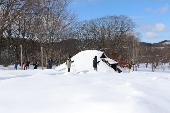 冬の縄文公園を歩いてみよう