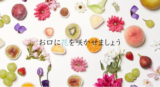 鎌倉 果実大福 華菱 お口に花を咲かせましょう
