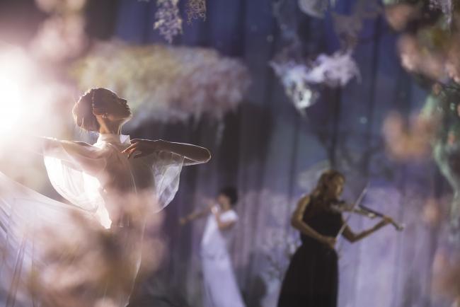FLOWERS by NAKED 会場内 「桜彩」※画像はイメージです。特別公演時の出演者は異なります。