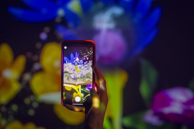 3. 秘密の花図鑑が3Dで現れる