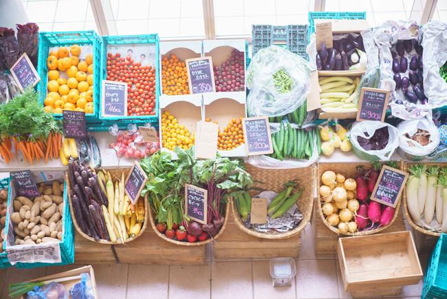 地元産のカラフル野菜も出店 ※イメージ
