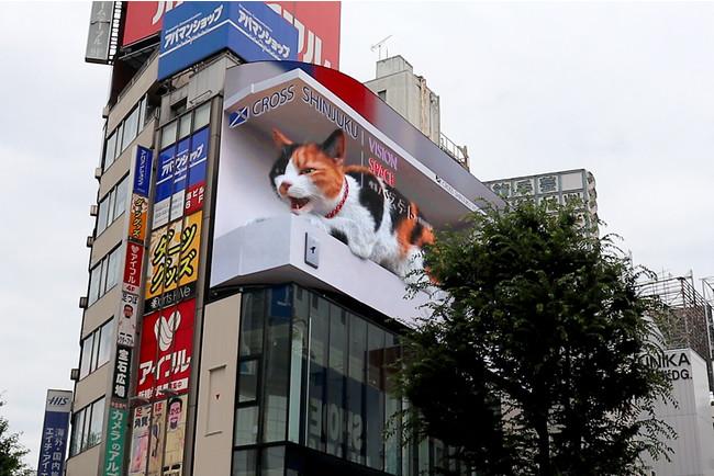 放映面が2面あるため、奥行感のある演出が可能です(JR新宿駅東口駅前広場より撮影)