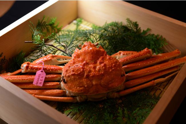 ICHIJO「地獄蒸し 松葉蟹」