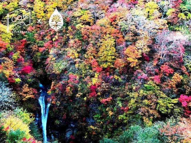 紅葉の「駒止の滝」