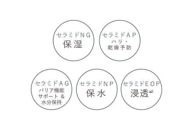 5種のヒト型セラミド_図