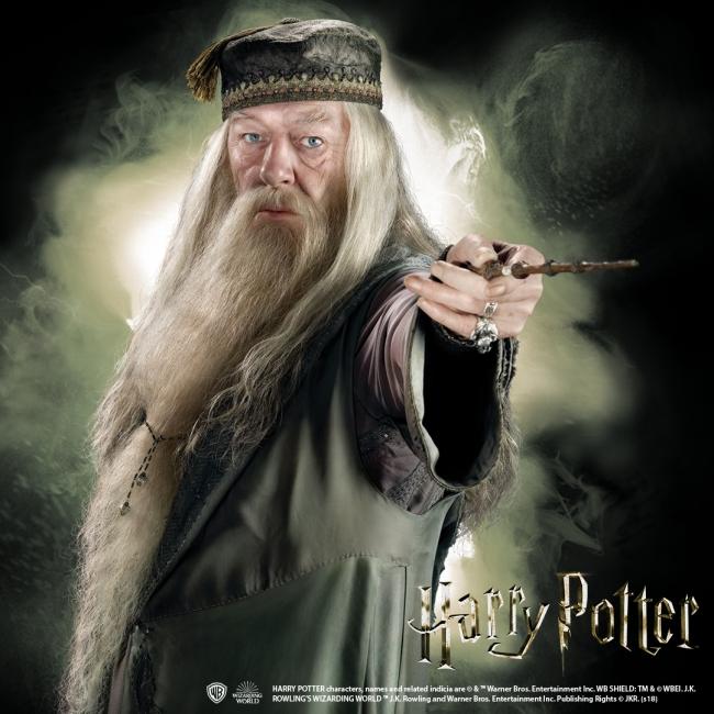 杖 診断 ポッター ハリー