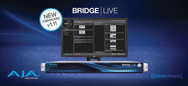BRIDGE LIVE v1.11