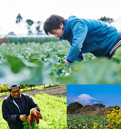 「農業体験」イメージ