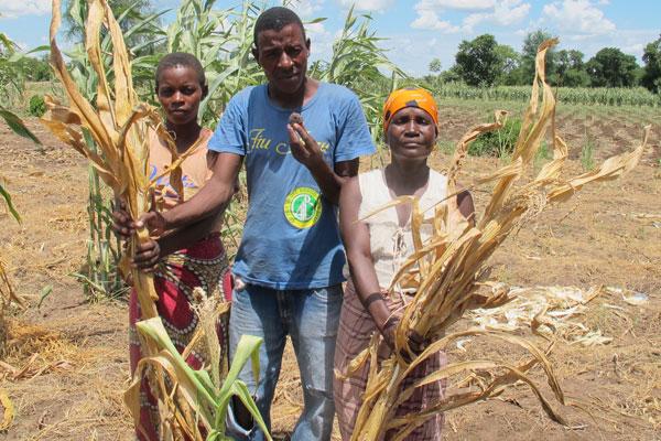 干ばつ被害のマラウイで史上最大...