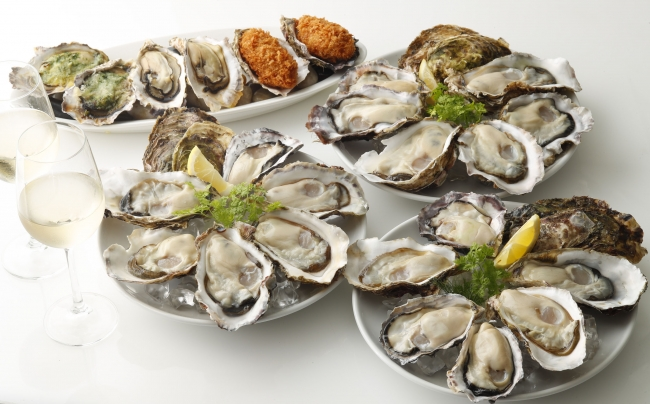 POWER OYSTERイメージ