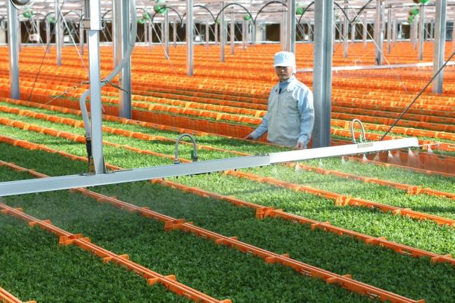 (図2)村上農園 山梨北杜生産センター