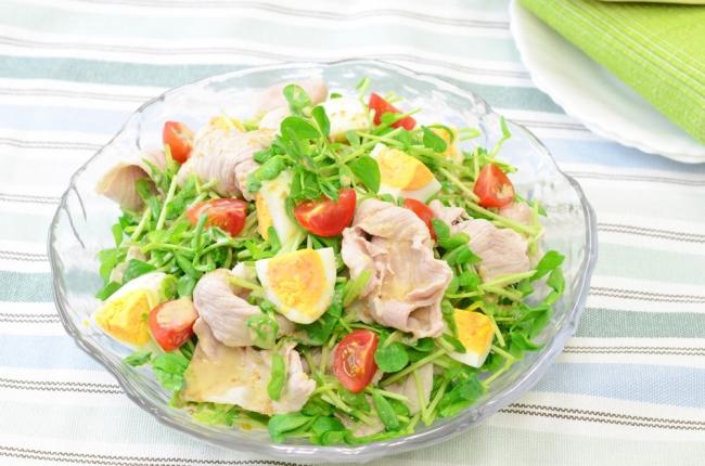 サラダ 豆 生 苗