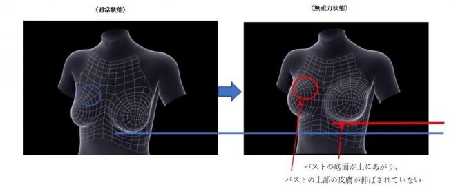 <通常(重力がかかっている)状態のバストと無重力に近い状態のバストの比較>