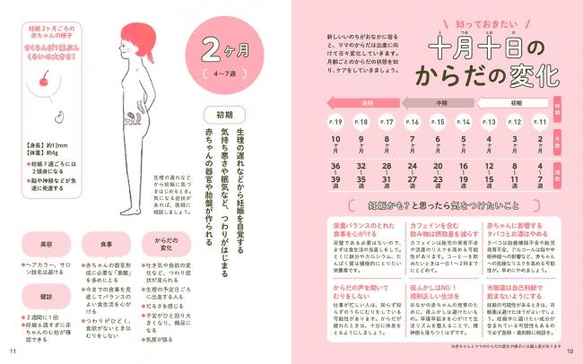はじめての妊娠。これからママと赤ちゃんのからだはどう変化する?