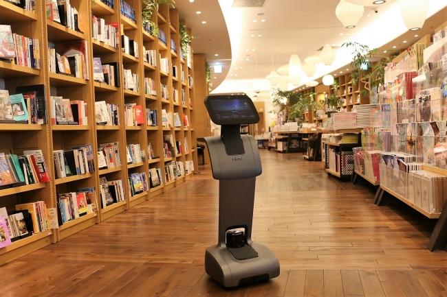 2019年9月13日(金)から二子玉川 蔦屋家電 1階 Tech Frontで展示されるパーソナルロボット temi